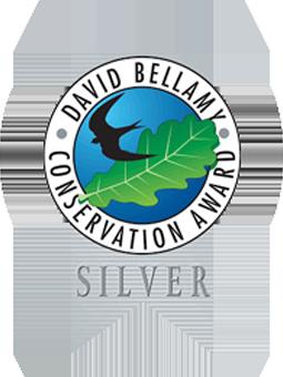 bellamy-silver