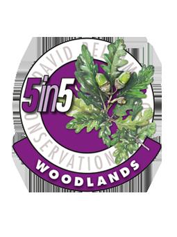 Feughside Caravan Park David Bellamy 5 in 5 Woodlands Award | UK Tourism Online