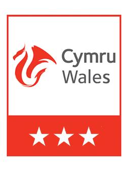 Visit Wales 3 Star Logo | UK Tourism Online