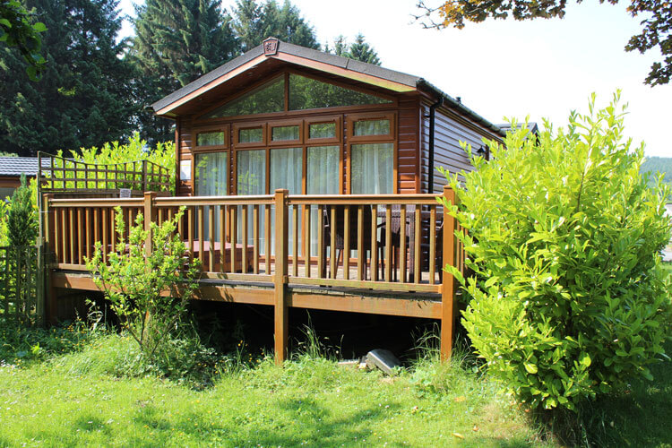 Border Forest Self Catering - Image 1 - UK Tourism Online