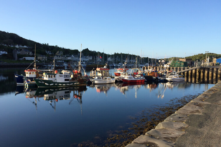 Harbour View Bed and Breakfast - Image 1 - UK Tourism Online