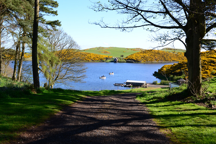 Coldingham Loch Fly Fishery & Holiday Cottages - Image 2 - UK Tourism Online