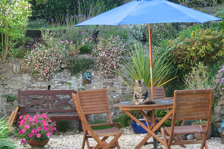 Stratton Gardens - Image 5 - UK Tourism Online
