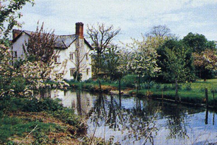 Fluxton Farm - Image 1 - UK Tourism Online
