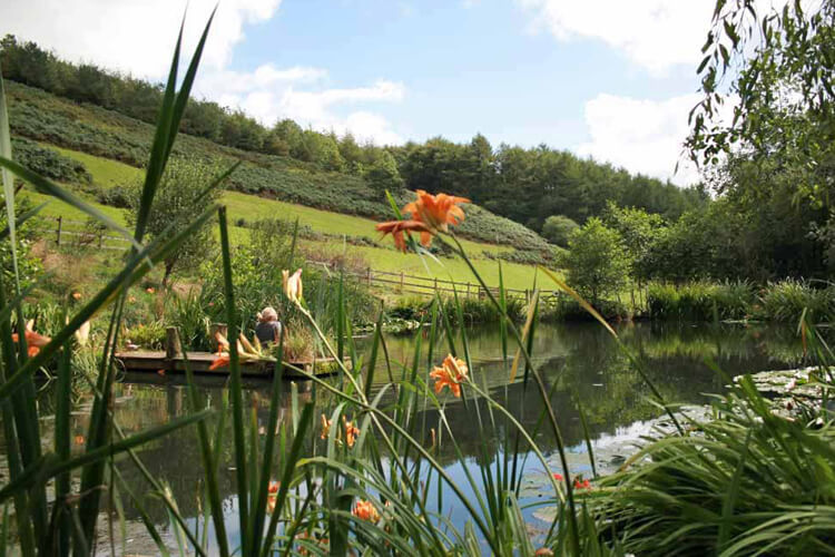 Huxtable Farm Bed and Breakfast - Image 5 - UK Tourism Online