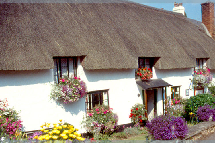 The Old Farmhouse - Image 1 - UK Tourism Online