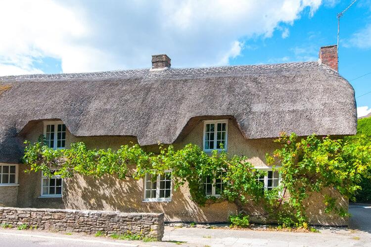 Two Vine Cottage - Image 1 - UK Tourism Online