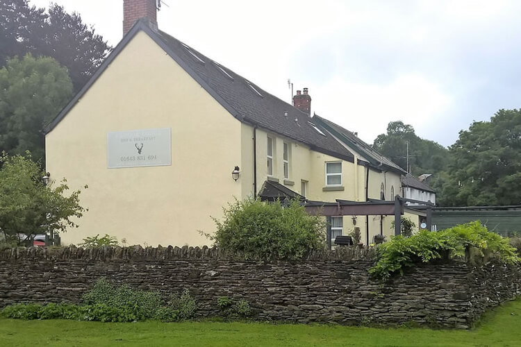 Exmoor Lodge Guest House - Image 1 - UK Tourism Online