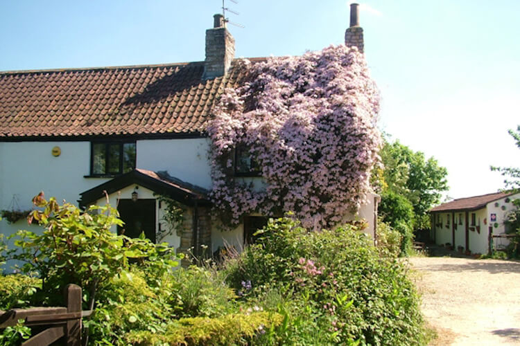 Fern Cottage Bed Breakfast - Image 1 - UK Tourism Online