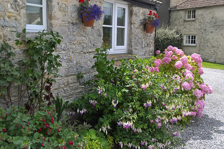 Hillview Farm Bed and Breakfast - Image 1 - UK Tourism Online