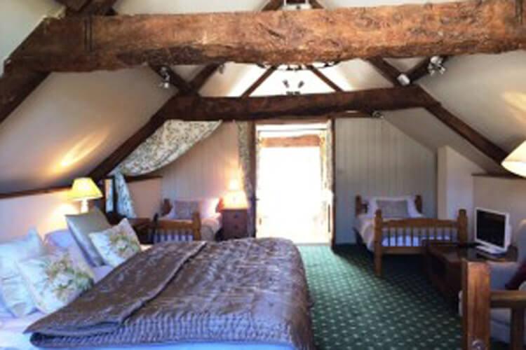 Huntstile Organic Farm Bed and Breakfast - Image 4 - UK Tourism Online