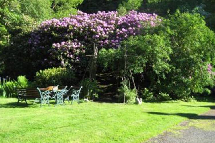 Plas Derwen Country House - Image 5 - UK Tourism Online