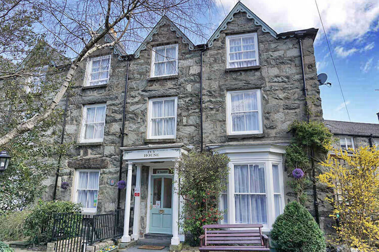 The Ivy House - Image 1 - UK Tourism Online
