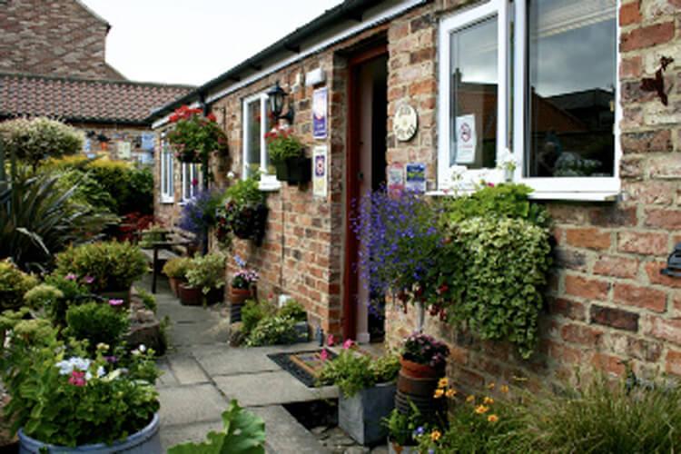 Fern Cottage - Image 1 - UK Tourism Online