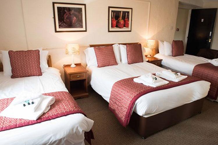Golden Lion Hotel - Image 4 - UK Tourism Online