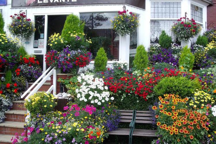Levante Guest House - Image 1 - UK Tourism Online