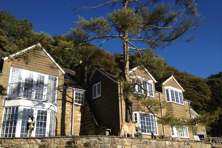Willow Tree Cottage Bed & Breakfast - Image 1 - UK Tourism Online